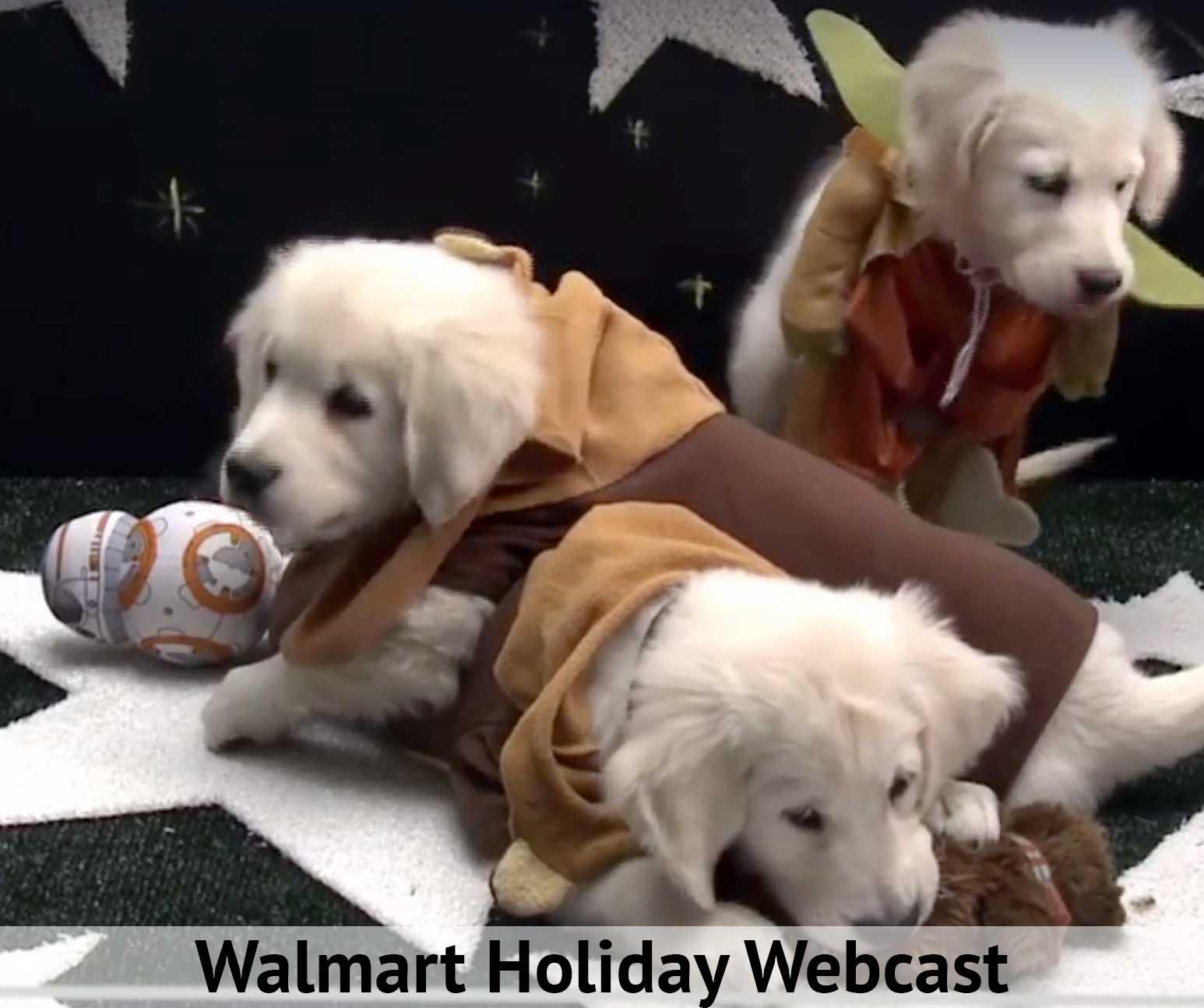 Walmart WebCasts Holiday Prep Advice 1