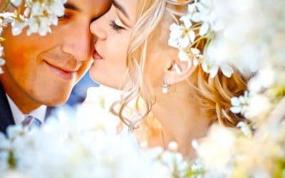WebCasting a Wedding