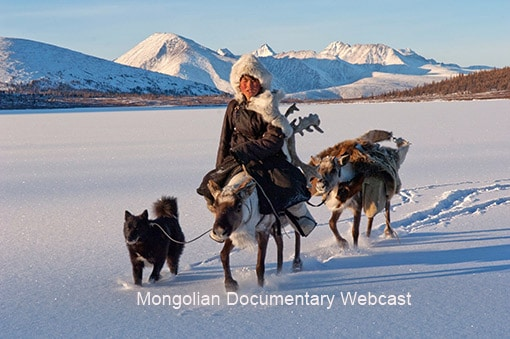 Young Mongolian girl treks though the Himalayas mounted on a reindeer.
