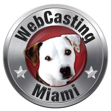 WebCasting Miami logo