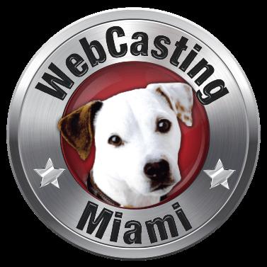 Logo - WebCasting - Miami
