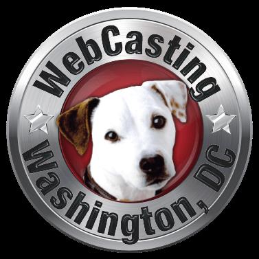 WebCasting Washington D.C. - logo
