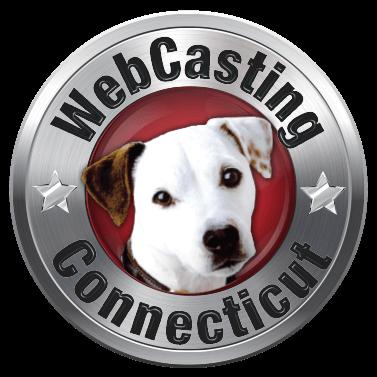 Connecticut WebCasting photo