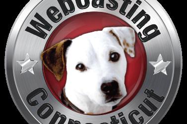 WebCasting Stamford, CT