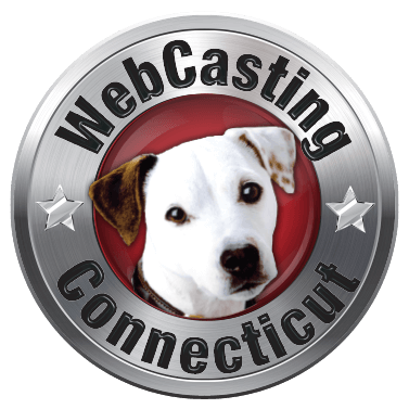 WebCasting -Connecticut logo
