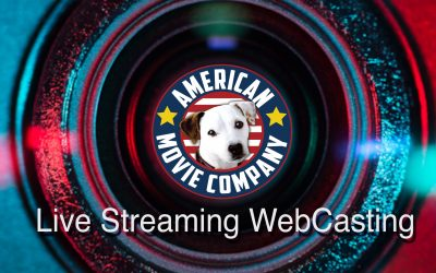 Discover The Top 10 Things You Need To Engage Large Groups in Live Streaming Video Conferences