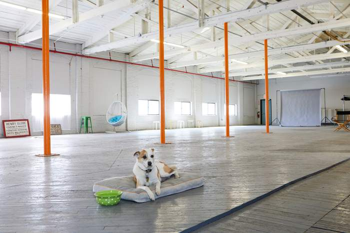 Film Location: Loft & Event Space, NYC 212-219-1075 4