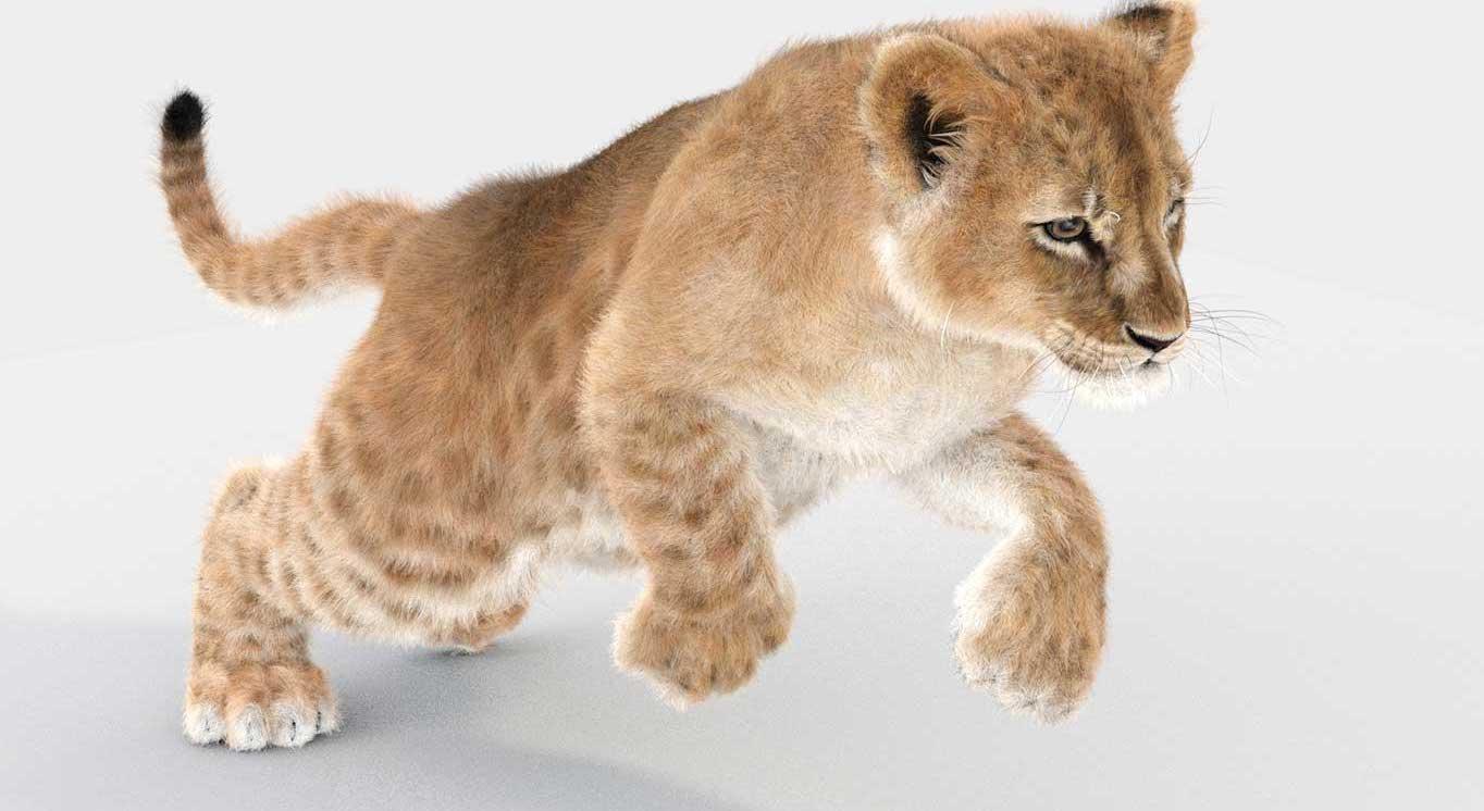 Animated AR  Lion Cub 2