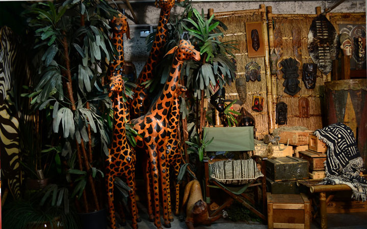 Long Island city Studios Jungle Props Giraffe Props and Trees